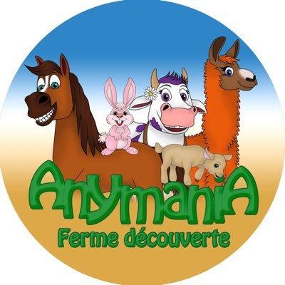 Anymania