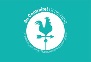 Au Contraire! Consulting
